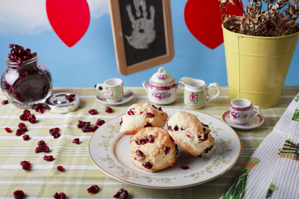 The Two Little Bakers Cranberry Scones recipe